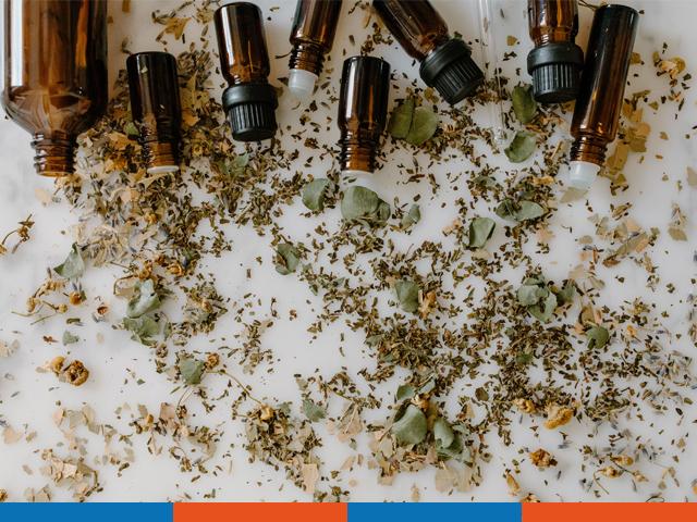 Aromatherapiesprechstunde: Öle | Praxis Schleicher & Brückl