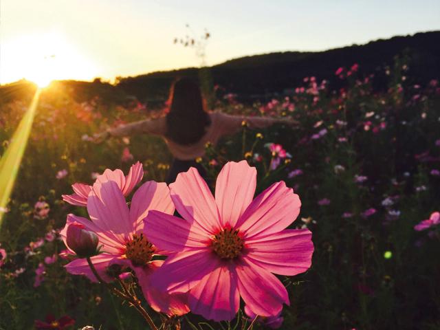 Fit in den Frühling | Praxis Schleicher & Brückl