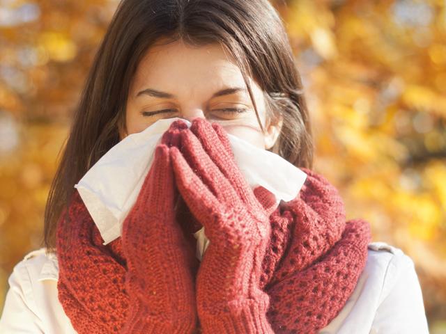 Grippe vorbeugen | Praxis Schleicher & Brückl