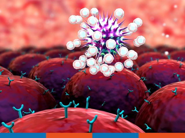 Störungen des Immunsystems | Praxis Schleicher & Brückl
