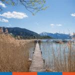 Sommerurlaub 2020 in der Praxis Schleicher & Brückl von 07.08. bis einschl. 21.08.2020!